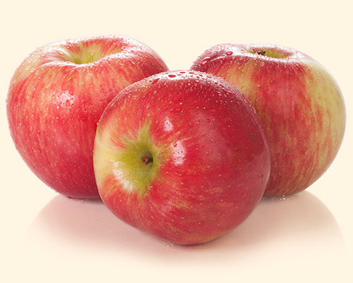 honeycrisp-lrg